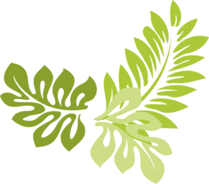 Palm leaves clipart #19