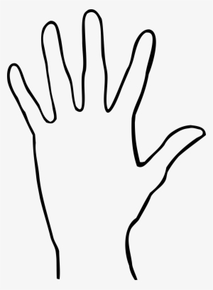 Hand Palm Png PNG Images.