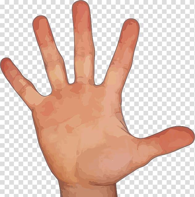 Right human palm illustration, Index finger Hand Little.