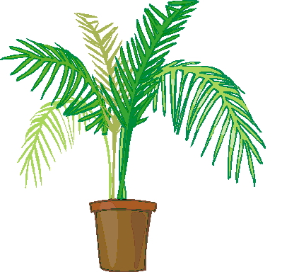Palm tree art tropical palm trees clip art clip art palm tree 5.