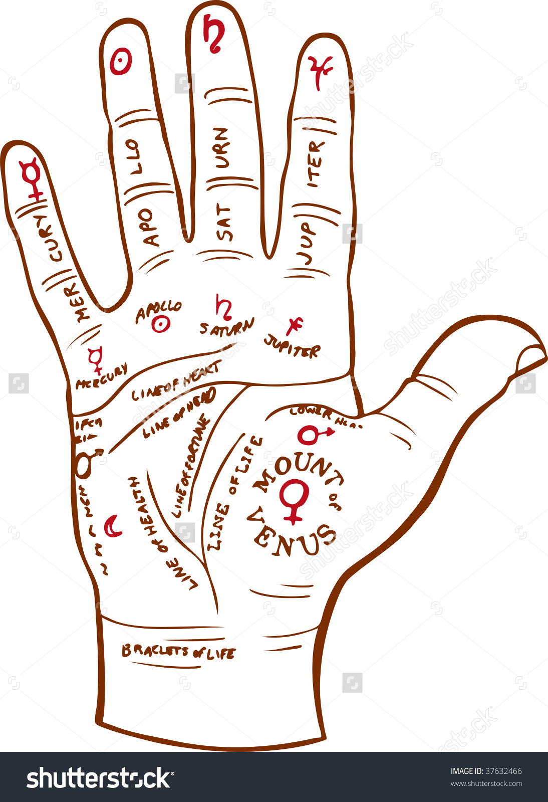 Palm Reading Map Stock Vector 37632466.