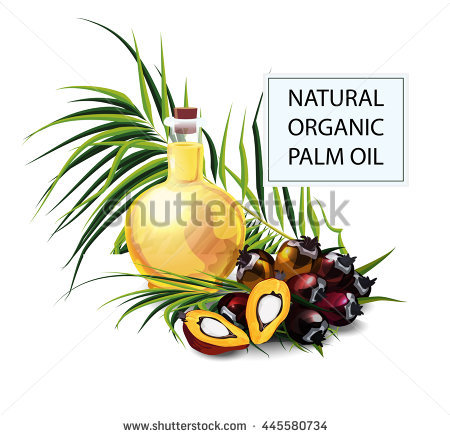 Palm seeds clipart #3