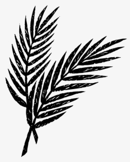 Free Palm Sunday Clip Art with No Background.