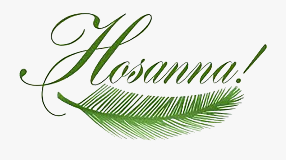 Pretty Design Clipart Palm Sunday By Sister Rose Ann.