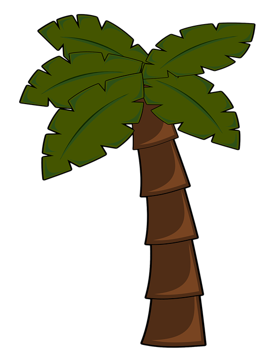 Palm tree bark clipart #5