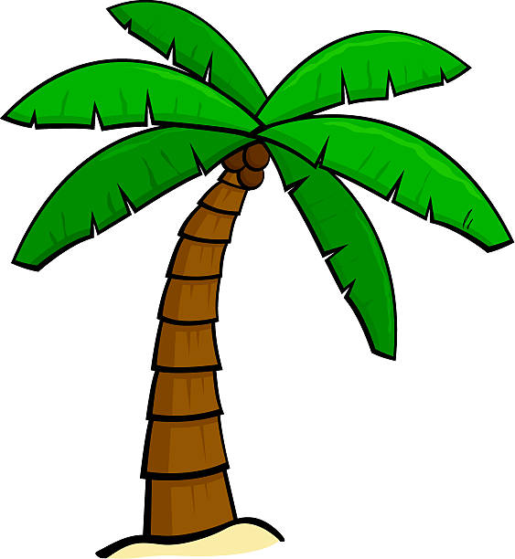 Palm tree bark clipart #2