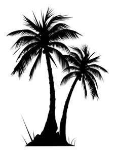 Palm tree bark clipart #14