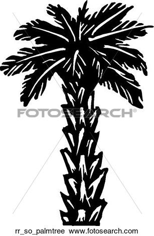 Palm tree bark clipart #20