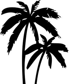 My New tattoo, tatovering, palmtree, palm, California, Dream,.