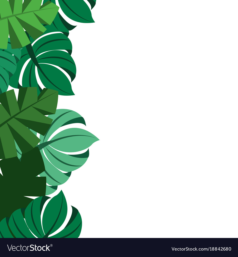 Tropical leaves palm tree border decoration.