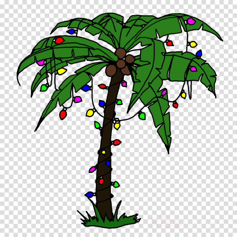 Palm Tree Leaf clipart.