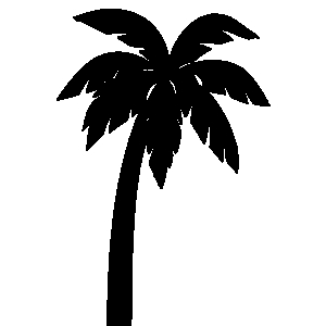 Palm tree clipart tropical palm trees 2.