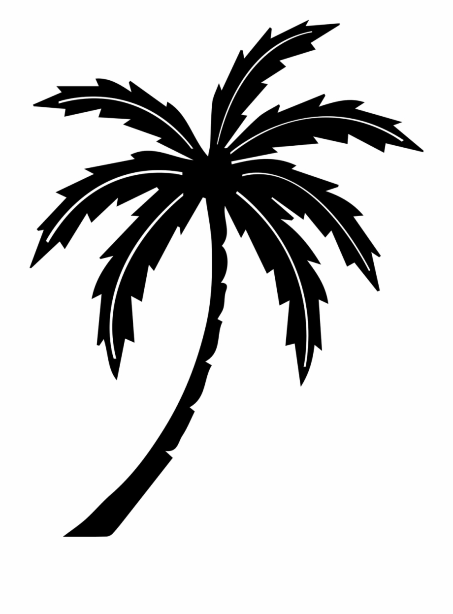 Palm Tree Tree Tropic.
