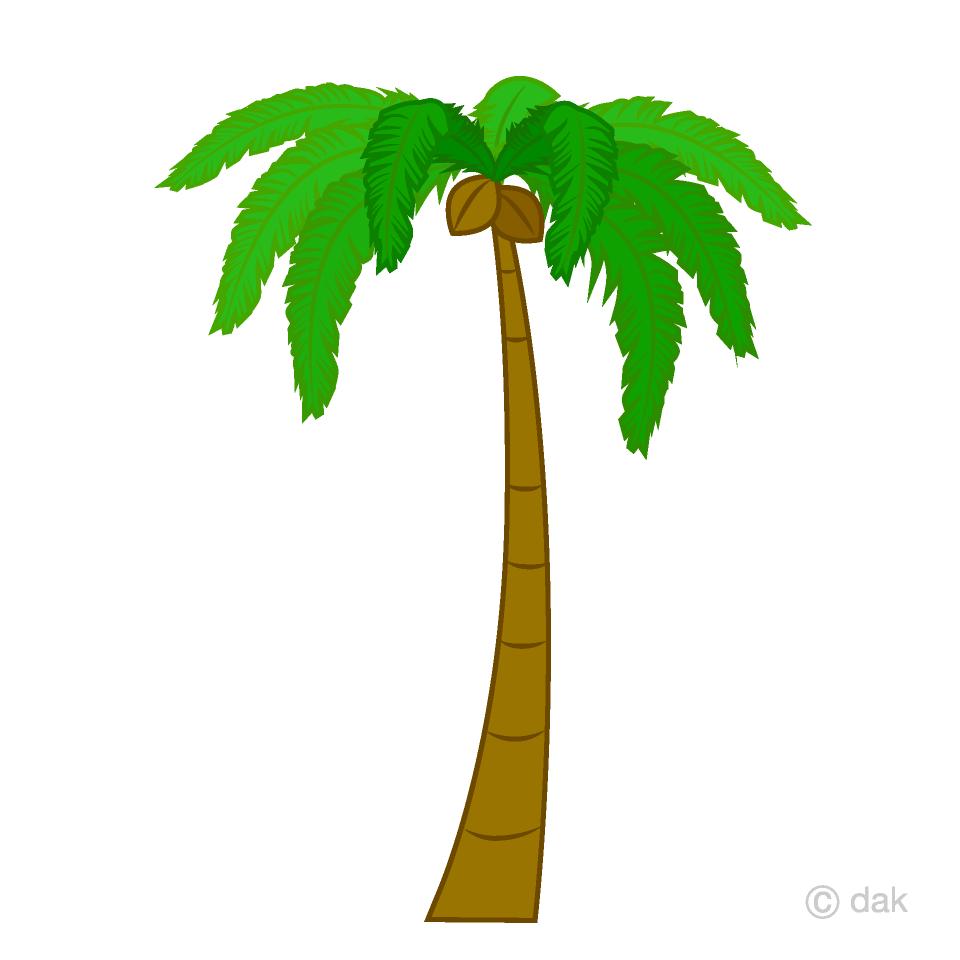 Palm Tree Clipart Free Picture|Illustoon.