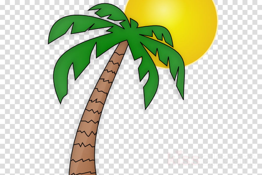 Palm Trees, Tree, Drawing, transparent png image & clipart.