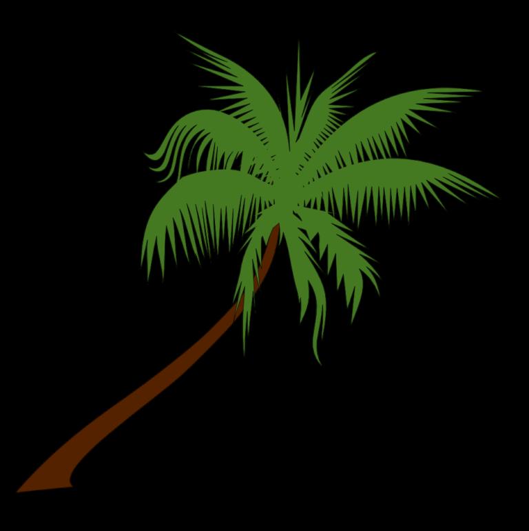 ➡ Palm Tree Clip Art Image Free Download 2019.