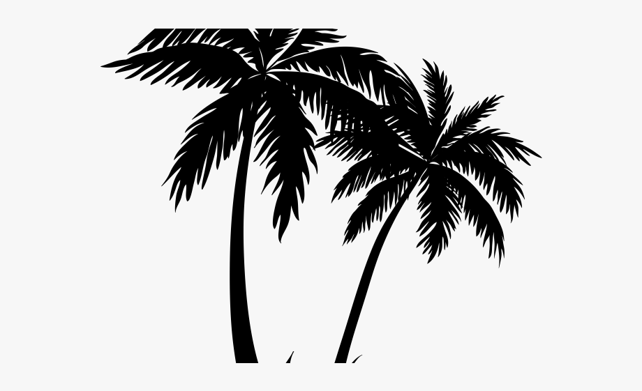 Palm Tree Clipart Curved.