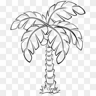 Free Palm Tree Outline Png Transparent Images.