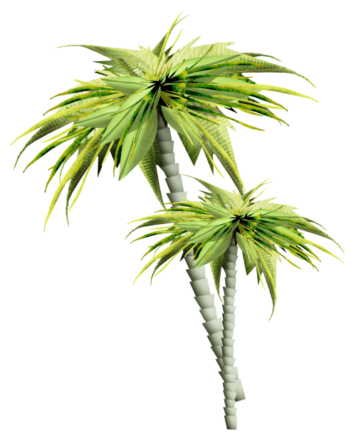 Asian palmyra palm Palm trees GIF Portable Network Graphics.