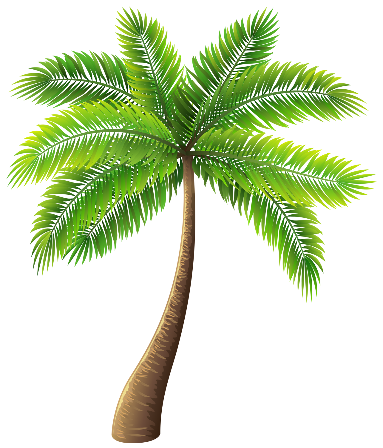 Palm Tree Clipart, Palm Tree.PNG Images.