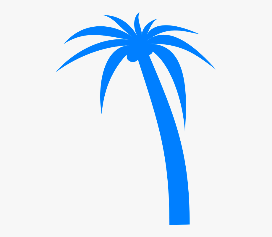 Palm Tree Free Vector Graphic On Pixabay.