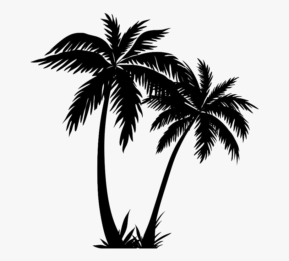 Silhouette Palm Trees Clip Art Drawing Vector Graphics.