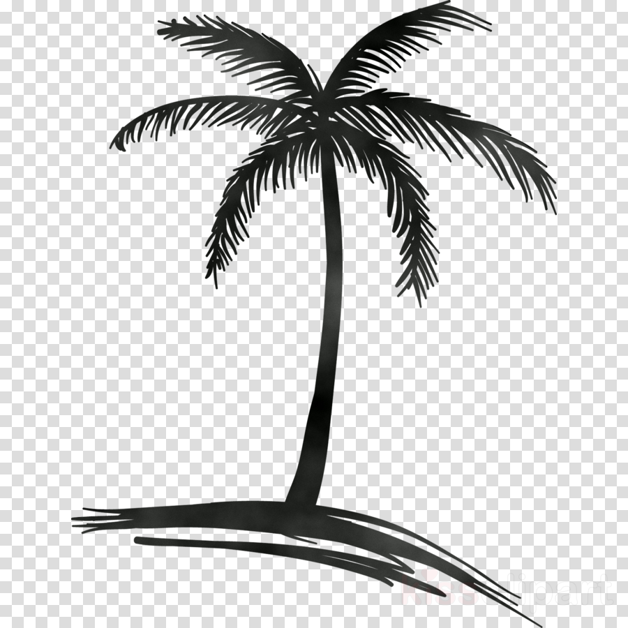 Coconut Tree Drawing clipart.