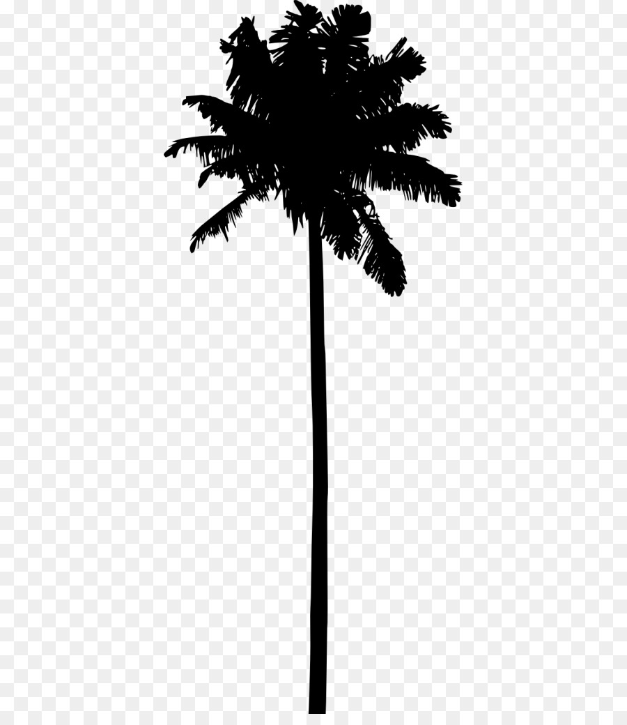 Portable Network Graphics Clip art Silhouette Palm trees.
