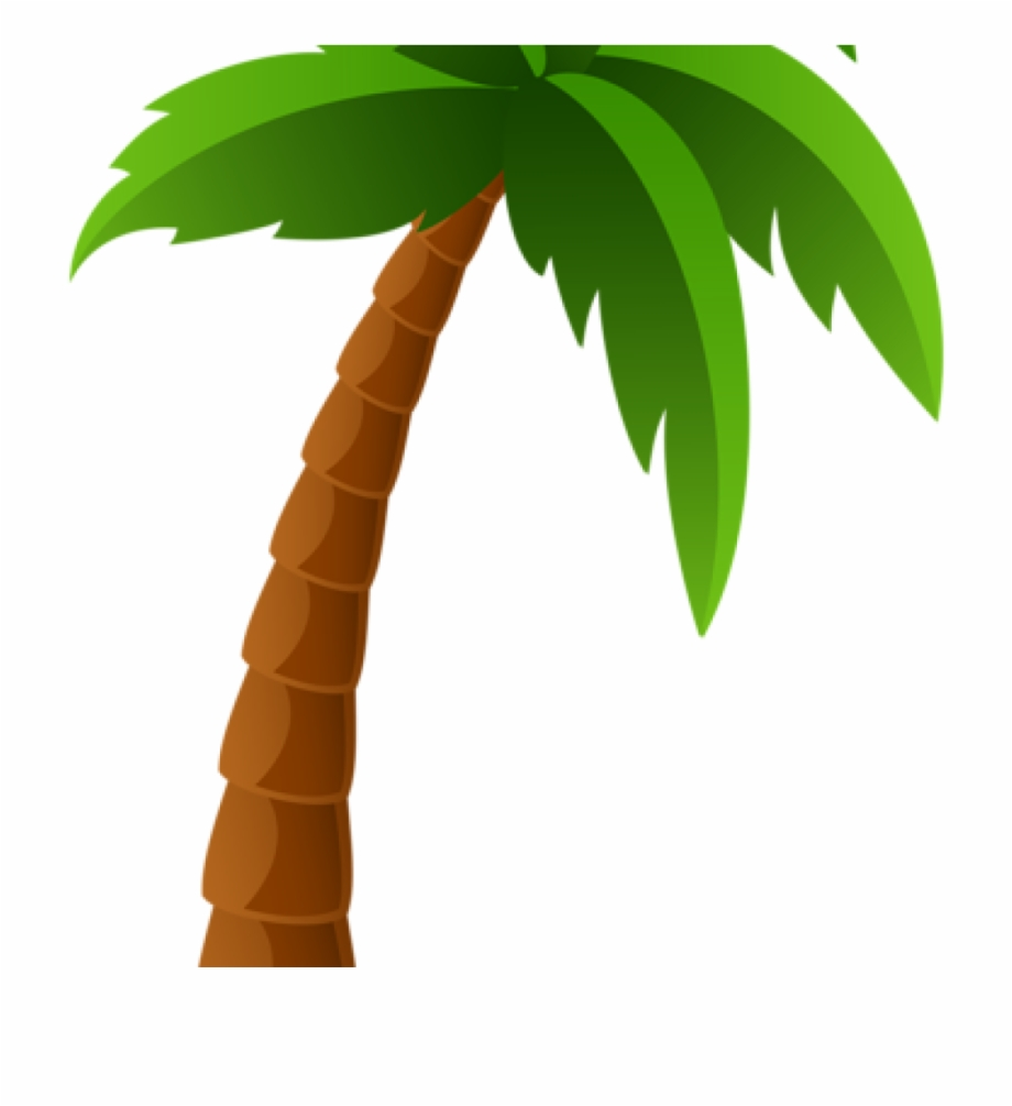 Palm Clipart Palm Tree Png Image Clipart Graphics Pinterest.