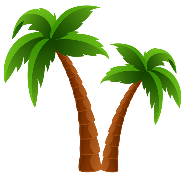 Palm trees graphic clipart images gallery for free download.