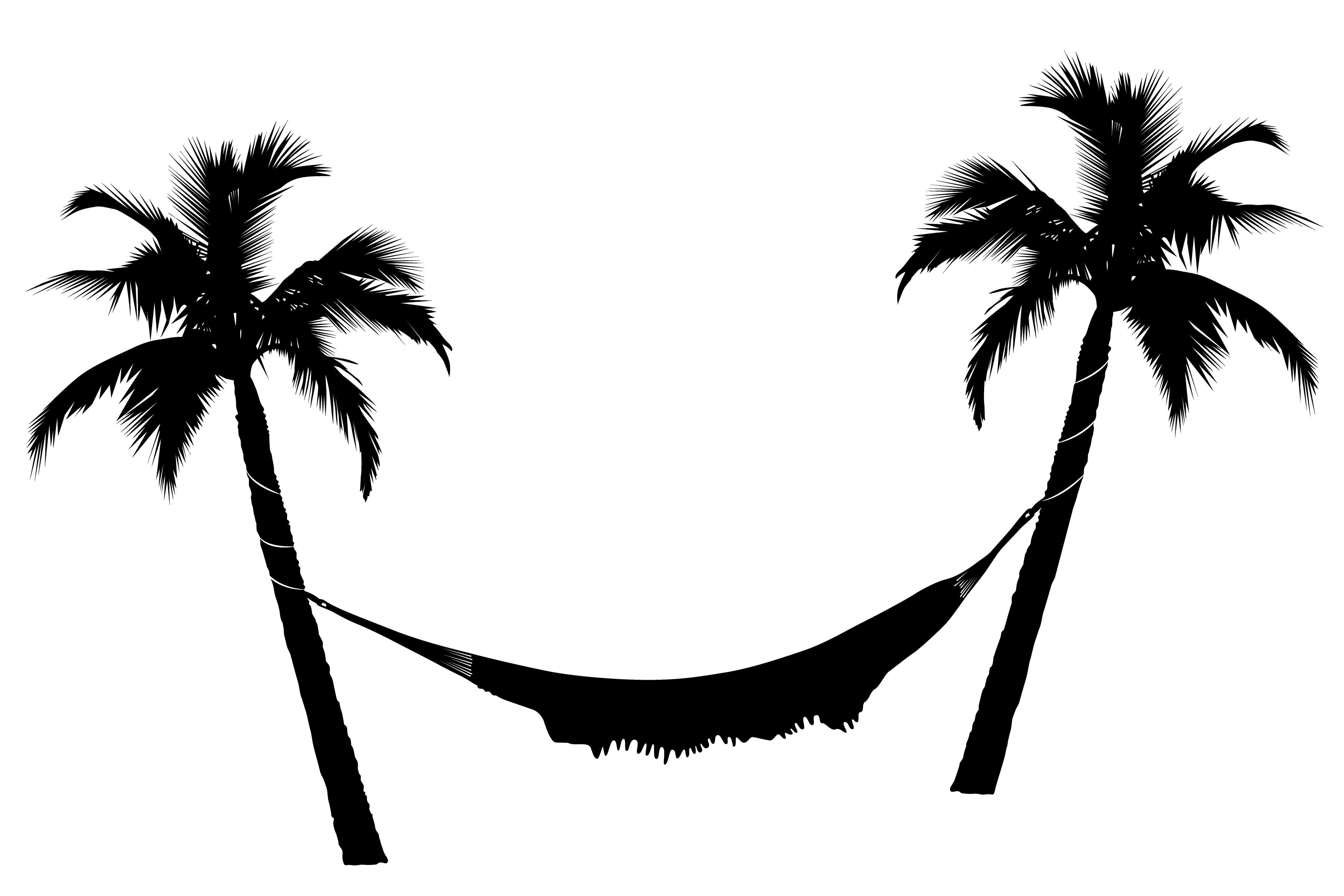 Showing post & media for Cartoon palm tree hammock.
