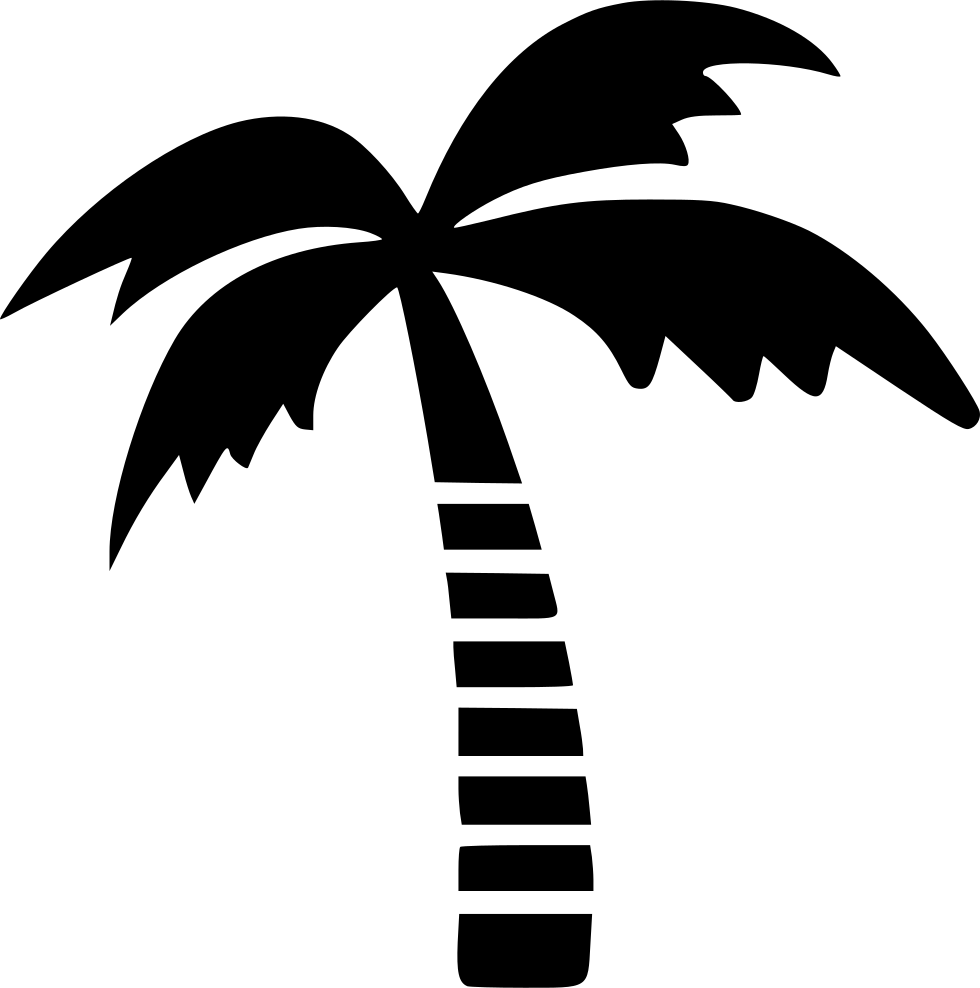 Palm Tree Icon Png #191102.