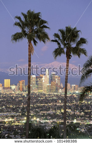 Los Angeles Palm Trees Stock Images, Royalty.
