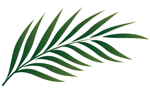 Tropical Leaf Cliparts.