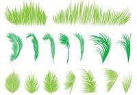 Palm Tree Free Vector Art.
