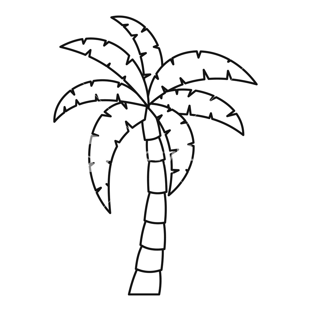 Palm tree icon. Outline illustration of palm tree vector.