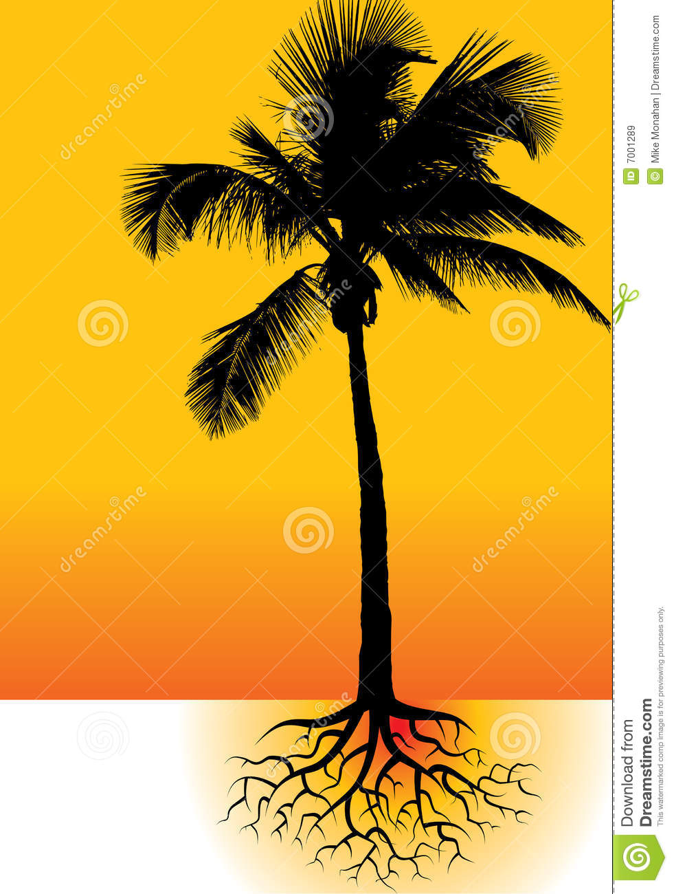 Palm Tree And Roots Royalty Free Stock Images.