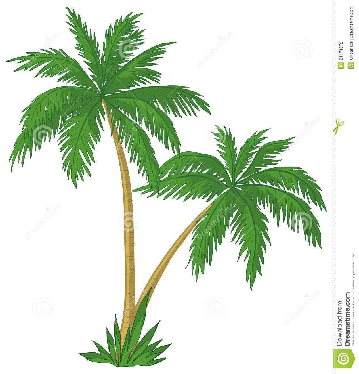 Palm tree root clipart #11
