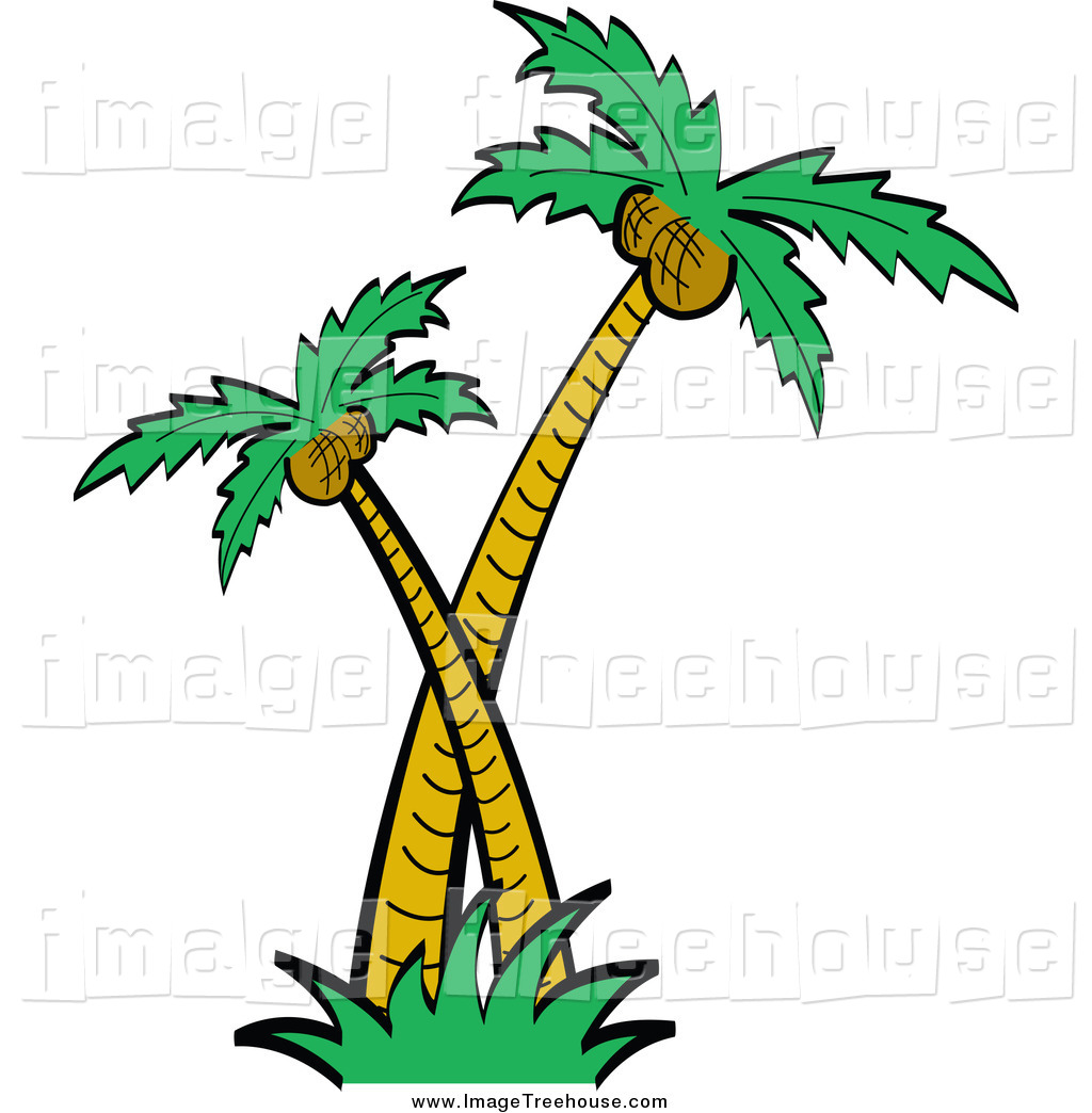 Coconut Palm Tree With Roots Clipart.