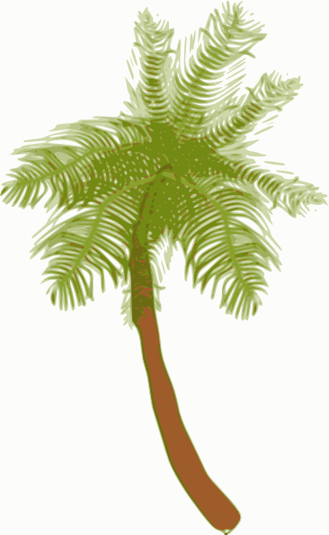 Palm tree root clipart #10