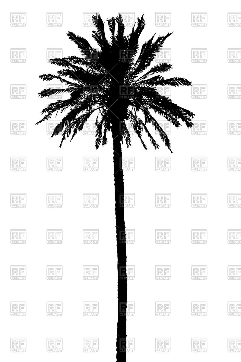 Silhouette of palm tree Vector Image #76472.