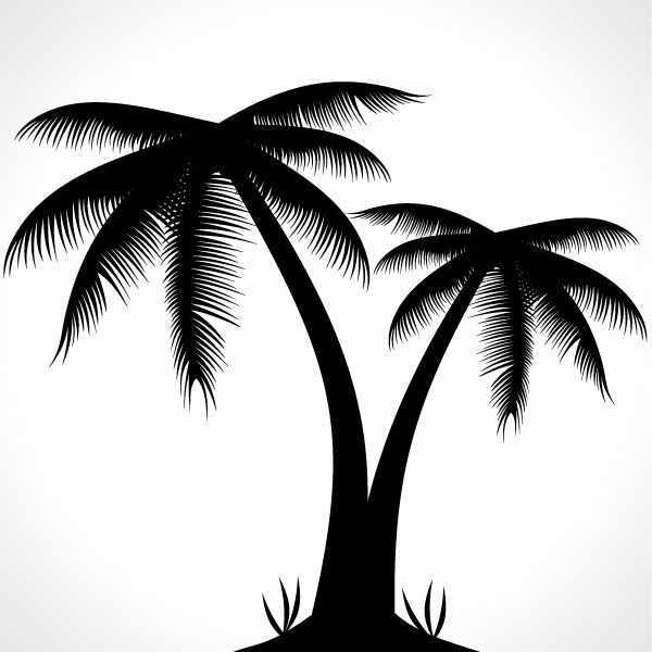 Palm Tree Silhouette Vector Illustration.