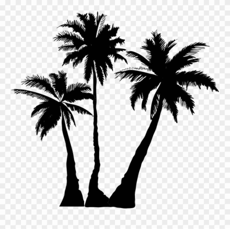 Vaporwave Palm Tree Png Transparent Background.