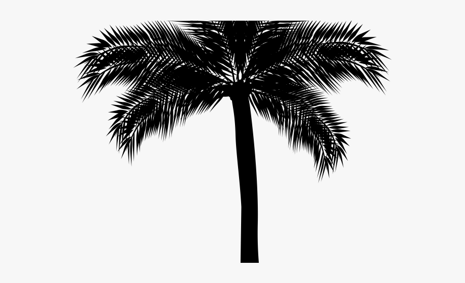 Palm Tree Clipart Silhouette.