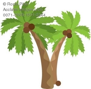 Clipart Illustration of Palm Trees With Coconuts.