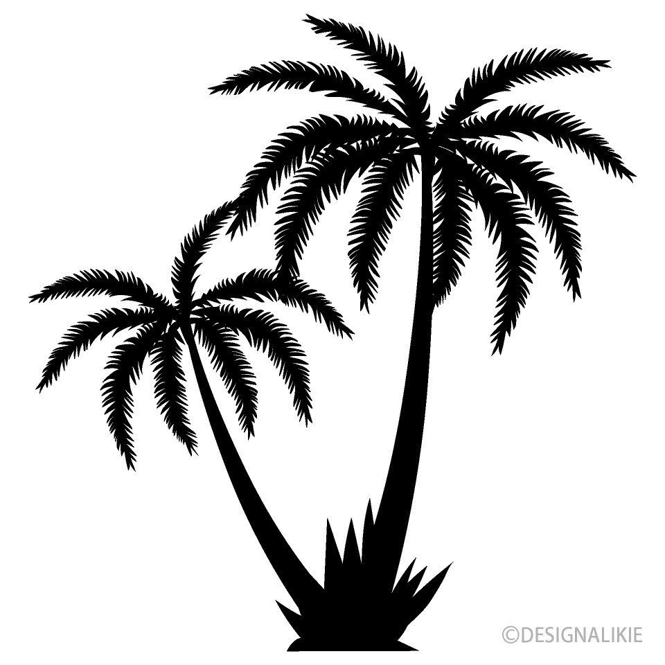 Free Two Palm Trees Black and White Image|Illustoon.