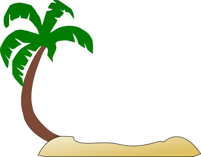 Palm trees clipart #19