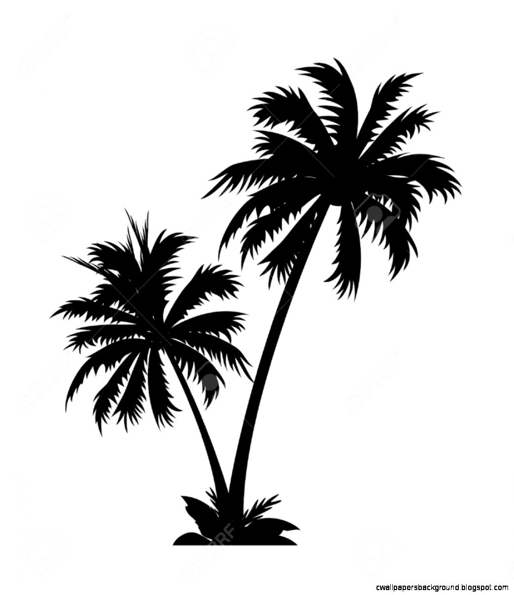 Palm tree clipart black and white clipartfest.