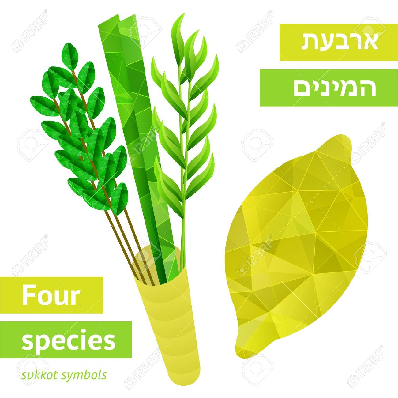 Four Species.