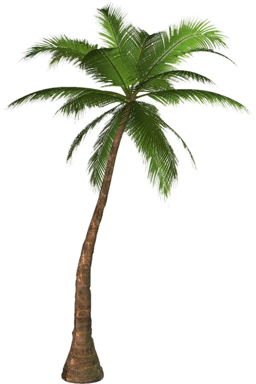 Download Free png Palm Tree Png.